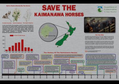 Kaimanawa Infographic