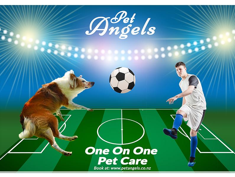 Pet Advertisement